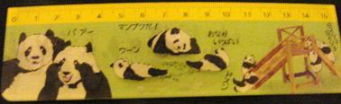 国立科学博物館のパンダの定規2
